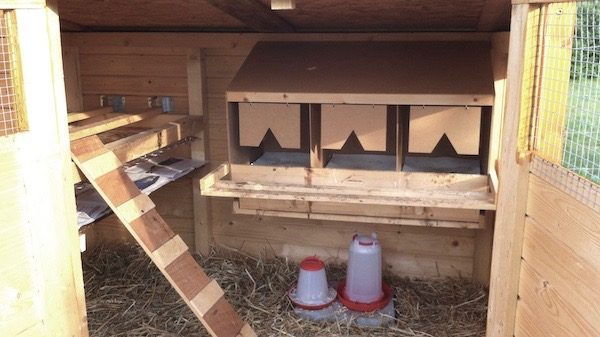 A fully equipped hen house from the inside, with laying nests, water and feed troughs, chicken ladder and poles.